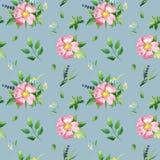 Bezszwowy wzór z różą, zieleni życiami i chamomile, obraz stock