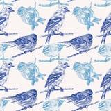 Bezszwowy wzór z różnymi ptakami rysującymi ręką Obrazy Royalty Free