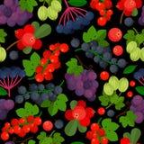Bezszwowy wzór z różnymi jagodami Zdjęcia Stock
