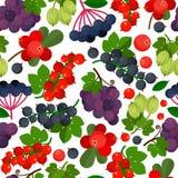 Bezszwowy wzór z różnymi jagodami Obrazy Stock