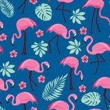Bezszwowy wzór z różowymi flamingami obrazy stock