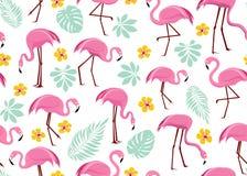 Bezszwowy wzór z różowymi flamingami fotografia royalty free