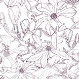 Bezszwowy wzór z ręka rysującym kreskowym fiołkowym magnoliowym kwiatem również zwrócić corel ilustracji wektora ilustracja wektor