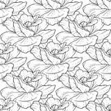 Bezszwowy wzór z ręka rysującym kwiatem Zdjęcie Stock