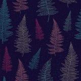 Bezszwowy wzór z ręka rysującymi paproć liśćmi Fotografia Stock