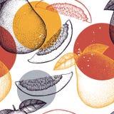 Bezszwowy wzór z ręki rysować pomelo ilustracjami Wektorowy cytrusa tło Lato owoc rysuje dla logo, ikona, etykietka, paczka royalty ilustracja