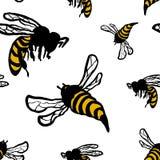 Bezszwowy wzór z ręki rysować pszczołami Zdjęcie Royalty Free