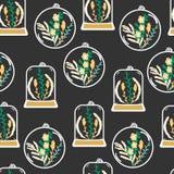 Bezszwowy wzór z ręki rysującymi kwiecistymi terrariami Fotografia Royalty Free