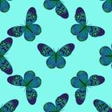 Bezszwowy wzór z rocznika modrozielonym motylem ilustracji