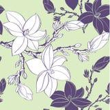 Bezszwowy wzór z rysunkowymi magnoliowymi kwiatami royalty ilustracja