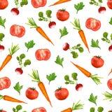 Bezszwowy wzór z rzodkwiami, marchewki i Ilustracja Wektor