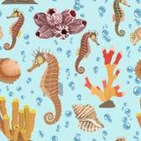 Bezszwowy wzór z seahorse skorupami, korale również zwrócić corel ilustracji wektora ilustracja wektor