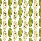Bezszwowy wzór z tropikalnymi egzotycznymi owoc kakaowy owocowy plasterek na białym tle Obraz Royalty Free