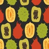 Bezszwowy wzór z tropikalnymi egzotycznymi owoc, mango, melonowiec, durian, carambola, wektor rysujący tło Zdjęcia Royalty Free