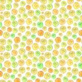 Bezszwowy wzór z uroczymi kolorowymi cytrusów plasterkami adobe korekcj wysokiego obrazu photoshop ilości obraz cyfrowy prawdziwa royalty ilustracja