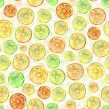 Bezszwowy wzór z uroczymi kolorowymi cytrusów plasterkami adobe korekcj wysokiego obrazu photoshop ilości obraz cyfrowy prawdziwa ilustracja wektor