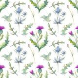 Bezszwowy wzór z wiosna liśćmi i kwiatami Wildflowers na odosobnionym białym tle kwiecisty wzór dla tapety lub tkaniny ilustracja wektor