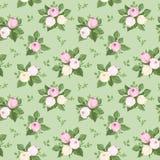 Bezszwowy wzór z wzrastał pączki i liście na zieleni. Zdjęcie Stock