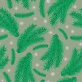 Bezszwowy wzór z zielonymi gałąź jodła Obraz Royalty Free