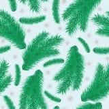 Bezszwowy wzór z zielonymi gałąź jodła Zdjęcie Stock