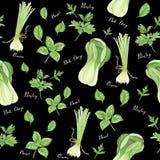 Bezszwowy wzór zieleni warzywa z literowaniem: cebula, pietruszka, basil i bok choy, akwarela obraz ilustracji