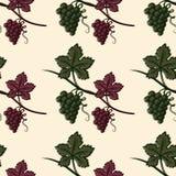 Bezszwowy wzór Zielony i Czerwony winogrono Zdjęcia Royalty Free