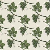 Bezszwowy wzór Zielony winogrono Zdjęcia Stock