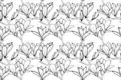 Bezszwowy wz?r z leluja kwiatami Realistyczna nakreślenie leluja wektor fotografia stock