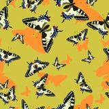 Bezszwowy wz?r z machaon motylami niebieski obraz nieba t?czow? chmura wektora Dla projekta tkanina, papier, wiele inny ilustracji
