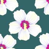 bezszwowy wzoru Czereśniowy okwitnięcie Wzór z różowymi kwiatami Ornament z orientalnymi motywami wektor royalty ilustracja