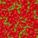 bezszwowy wzoru Czerwone jagody na gałąź z zielonymi liśćmi również zwrócić corel ilustracji wektora Obraz Stock