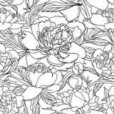 bezszwowy wzoru Peonia kwiaty Czerń wykłada na bielu Obrazy Stock