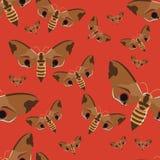 bezszwowy wzoru Realistyczny motyli jastrząb na czerwonym tle Insekty w wektorze ilustracji