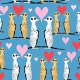 Bezszwowy wzór śmieszni meerkat kochankowie Fotografia Royalty Free