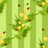 Bezszwowy wzór z biedronkami i kwiatami żartuje tło Obrazy Stock