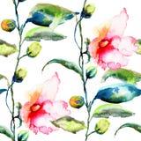 Bezszwowy wzór z Ipomea kwitnie ilustrację Zdjęcia Royalty Free
