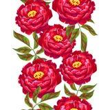 Bezszwowy wzór z peonia kwiatami Jaskrawi liście i pączki Zdjęcie Stock