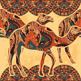 Bezszwowy wzór z wielbłądem dekorował z orientalnymi ornamentami i Egipt kolorowym kwiecistym ornamentem na grunge tle Obrazy Stock
