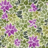 Bezszwowy zieleń liści wzór Zdjęcia Stock