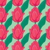 Bezszwowy zielony tło z czerwonymi tulipanami Obrazy Stock