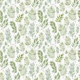 Bezszwowy ziołowy wzór z liśćmi beak dekoracyjnego latającego ilustracyjnego wizerunek swój papierowa kawałka dymówki akwarela royalty ilustracja