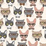Bezszwowych modnisiów kotów deseniowy tło Obrazy Royalty Free