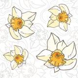 Bezszwowych wektorowych kwiatów rocznika pastelowy wzór, da Zdjęcia Stock