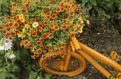 Beztroska lato bicyklu sztuka Obrazy Royalty Free