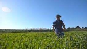 Beztroski dziecko w kapeluszu jogging przy łąką w lecie i ma zabawę Szczęśliwa chłopiec biega przez pola z zielenią zbiory