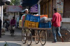A man walks a cart of vegetables to his family`s stall in Bhadarsa. royalty free stock photo
