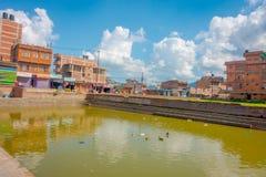 BHAKTAPUR,尼泊尔- 2017年11月04日:关闭与一个人为池塘的传统都市场面有游泳在的鸭子的 免版税库存照片