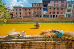 BHAKTAPUR,尼泊尔- 2017年11月04日:关闭与黄色水一个人为池塘的传统都市场面在 免版税库存照片