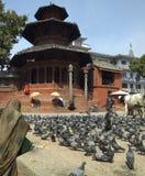 bhaktapur durbar加德满都尼泊尔广场 免版税库存图片