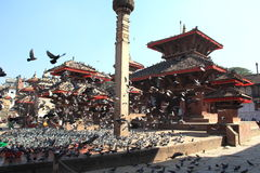 Bhaktapur(Nepal). Stock Photography